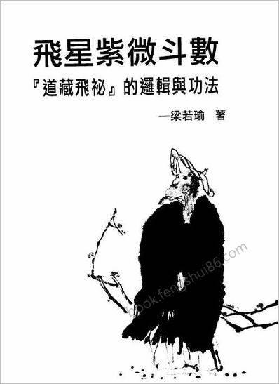 飞星紫微斗数》道藏飞秘的罗辑与功法》梁若瑜