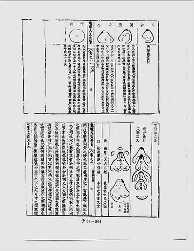 人天共宝卷11(堪舆类古本)